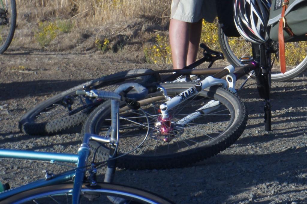 pretty-bike